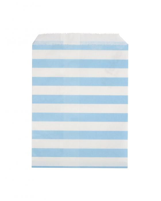 Blue & White Paper Bag